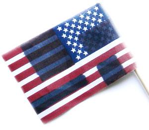 american-nazi-flag-swastika